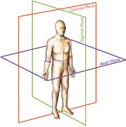 vertebral-derotation