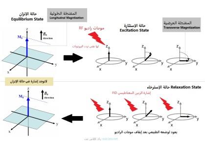 فيزياء الرنين المغناطيسي