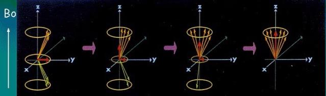 الرنين المغناطيسي
